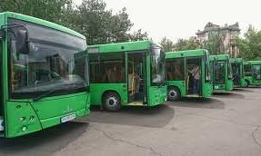 Коммунальный транспорт Николаева забрендируют в едином стиле